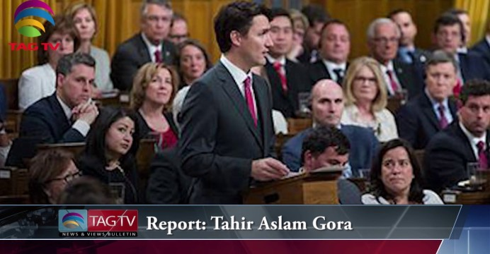 TAG TV News & Views Bulletin – Liberal Government's First Year, US Election Campaign, Patrick Brown's Stance on Nomination